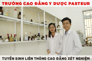 lien-thong-cao-dang-duoc