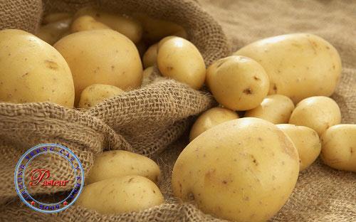 Công dụng của khoai tây trong việc trị mụn hiệu quả?