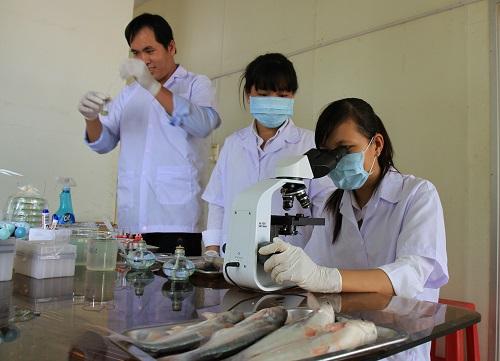 Kỹ thuật xét nghiệm viên đóng vai trò quan trọng trong hệ thống Y tế